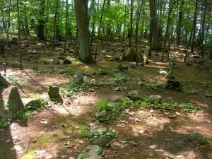 Two labyrinths in the woods of Rolling Ridge Retreat Center in No. Andover, MA on solstice day, 2011