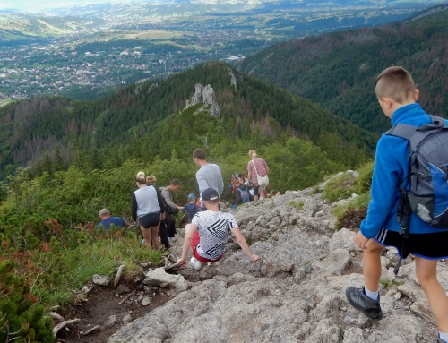Up To Deer Peak in Poland